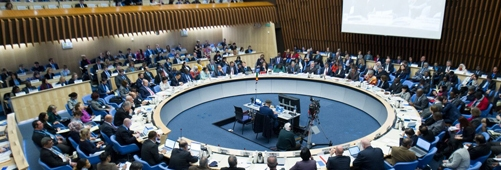 IHCO President attended WHO's ExecutiveBoard